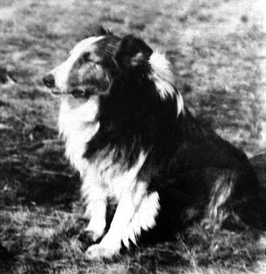 Декоит 1939 год