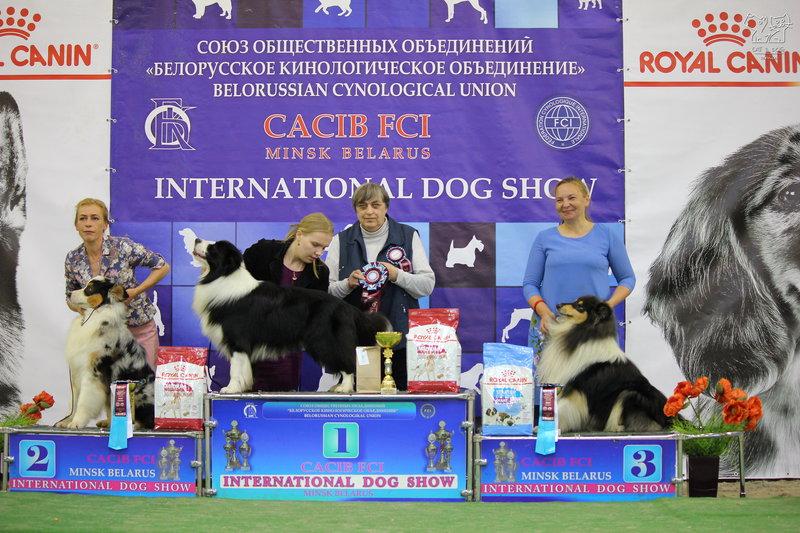 Бест 1 группы, международная выставка собак 02.06.2019