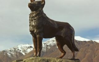 Памятник колли Пятнице в Новой Зеландии