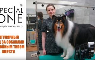 Регулярный уход за собаками с двойным типом шерсти (косметика Special One)
