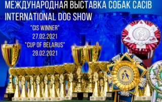 27-28.02.2021 – Международные выставки собак – CACIB