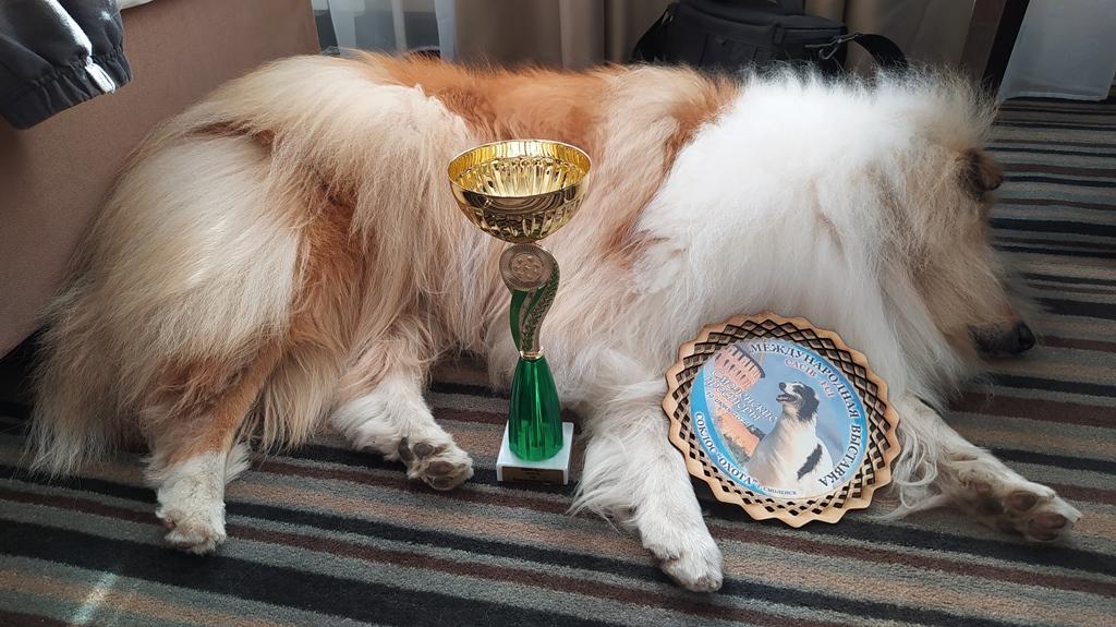 уставший чемпион